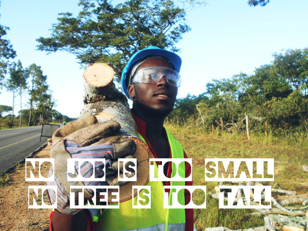 No job is too small, no tree is too tall