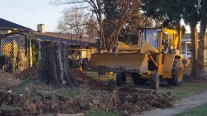 stump removals Harare